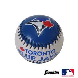 MLB 안전구 토론토 블루.